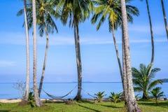 Piękna tropikalna plaża w wyspy Koh Kood, Tajlandia Zdjęcie Stock