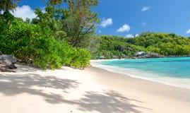 Piękna tropikalna plaża z drzewami, cieniami i oceanem, wakacje Zdjęcia Royalty Free