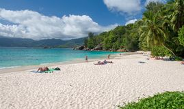 Piękna tropikalna plaża z piaskiem, oceanem i palmami, Zdjęcie Stock
