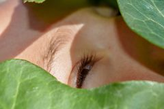 Piękna twarz zakrywająca zielonymi liśćmi obrazy royalty free