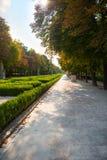 Piękna ulica w jesień parku obrazy royalty free