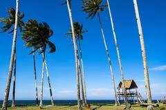 Piękna wioska w Terengganu, Malezja blisko plażowego surroun Fotografia Royalty Free