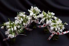 Piękna wiosna kwitnie dla Marzec 8 obraz stock
