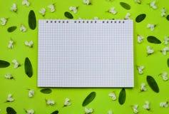 Piękna wiosny akacja kwitnie i liście i notepad obraz stock