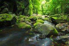 piękna wodospadu Zdjęcie Royalty Free