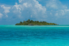 Piękna wyspa z palmami Obrazy Stock
