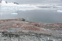 Piękna zatoka w Antarctica Fotografia Royalty Free