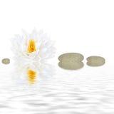 piękna zen. fotografia stock