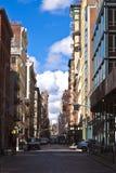 Piękna Zielona ulica w Manhattan z starymi domami, Nowy Jork obrazy royalty free