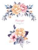 Piękna zimy kolekcja z gałąź, bawełniane rośliny, kwiaty, sukulent, kolorowi liście ilustracji