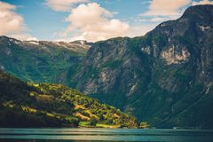 piękne śródpolne przedpola krajobrazu Norway truskawki Obrazy Stock
