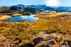 piękne śródpolne przedpola krajobrazu Norway truskawki Fotografia Royalty Free