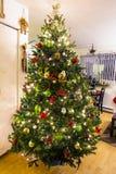 piękne Święta drzew ilustracyjni położenie Zdjęcia Stock