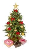piękne święta pojedynczy drzewo Obrazy Royalty Free