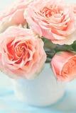 piękne świeże róże obraz royalty free