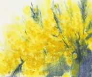 Piękne żółte akwareli plamy, pyellow icture ilustracja wektor