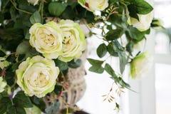 piękne białe rose Zdjęcie Royalty Free