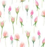 Piękne delikatne czułe śliczne eleganckie urocze kwieciste kolorowe wiosny lata menchii róże pączkują bukiet i opuszczają ilustracja wektor