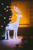 Piękne girlandy biała jelenia pozycja w domu Fotografia Royalty Free