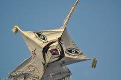 Piękne kanie na niebie Lankijczyka niebo zdjęcia royalty free