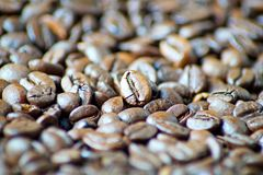 Piękne kawowe fasole jako tło obrazek obrazy royalty free