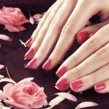 Piękne kobiet ręki z kwiatami i płatkami w zdroju projektują fotografia stock