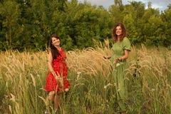 piękne kobiety w czerwieni i zieleni zbierają w polu ucho przy festiwalem obrazy royalty free