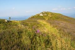 piękne krajobrazowe góry Kniaź Carpathians, Europa Zdjęcie Stock