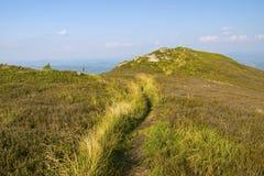 piękne krajobrazowe góry Kniaź Carpathians, Europa Obrazy Royalty Free