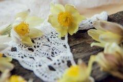 piękne kwiaty Marzec 8 kobiet dnia karta Bukiet śnieżyczki na drewnianym tle Obrazy Stock