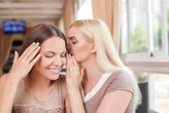 Piękne młode dziewczyny plotkują w kawiarni Zdjęcia Royalty Free