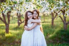 Piękne młode dziewczyny w białych sukniach w ogródzie z jabłoniami blosoming przy zmierzchem przyjaciele target951_1_ dwa zdjęcia royalty free
