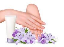 Piękne młode kobiet ręki z śmietanką i purpura kwiatami Zdjęcia Royalty Free