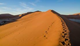 Piękne nadzwyczajne czerwone piasek diuny przy sławnym Deadvlei blisko Sossusvlei w Namib pustyni, Namibia, afryka poludniowa Obrazy Stock