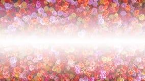 Piękne naturalne czerwone róże kwitną tło dla specjalnych okazj sztandaru Obraz Stock