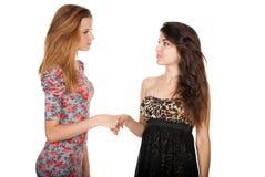 Piękne nikłe dziewczyny trząść ręki Zdjęcie Stock