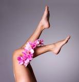 Piękne nikłe kobiet nogi z kwiatem zdjęcia royalty free
