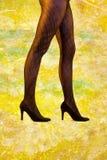 Piękne nogi w eleganckich rajstopy obraz stock