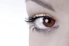 piękne oczy. fotografia royalty free