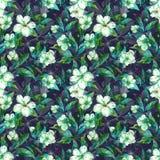 Piękne owocowego drzewa gałązki w kwiacie Biel i zieleń kwitniemy na szarym tle Wiosna bezszwowy kwiecisty wzoru Fotografia Stock