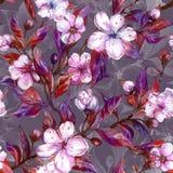 Piękne owocowego drzewa gałązki w kwiacie tło mleczy spring pełne meadow żółty bezszwowy kwiecisty wzoru adobe korekcj wysokiego  Obrazy Royalty Free