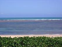 Piękne plaże serrambà północ Brazylia zdjęcie stock