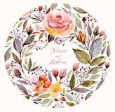 Piękne róże i liście ilustracja wektor