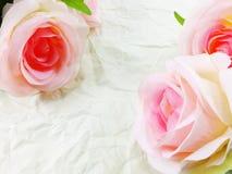 Piękne róże kwitną na papierowym tekstury tle z filtra kolorem Obraz Stock