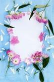 Piękne różowe balerin róże na błękicie malowali tło Zdjęcie Royalty Free