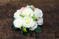 Piękne różowe i białe róże Fotografia Royalty Free