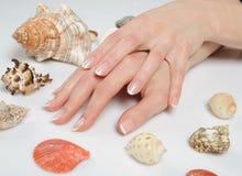 Piękne ręki, francuski zdroju manicure, denne skorupy obrazy royalty free