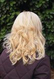piękne włosy zdjęcie royalty free
