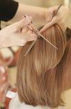piękne włosy Obraz Royalty Free