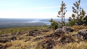 Piękne widoki doliny rzecznej zbiory wideo